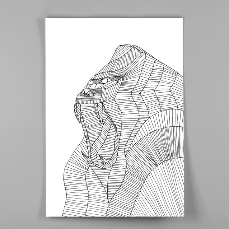 Image of Plakat I Mandril