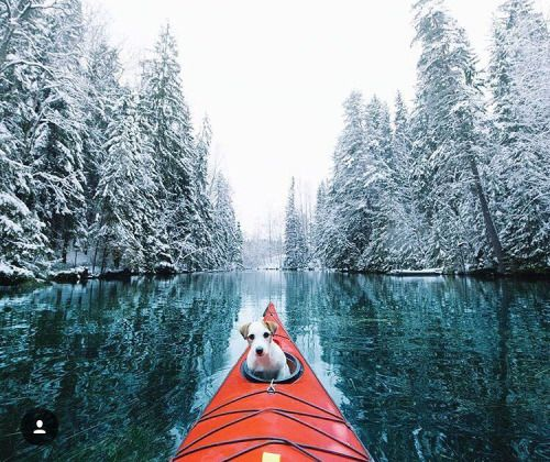 Kayaking around in Finland :@joonaslinkola #campcoop http://ift.tt/21GytAP