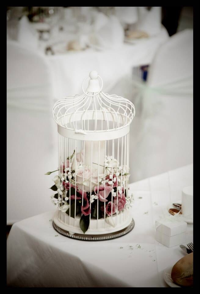 Ivory Birdcages available for hire.