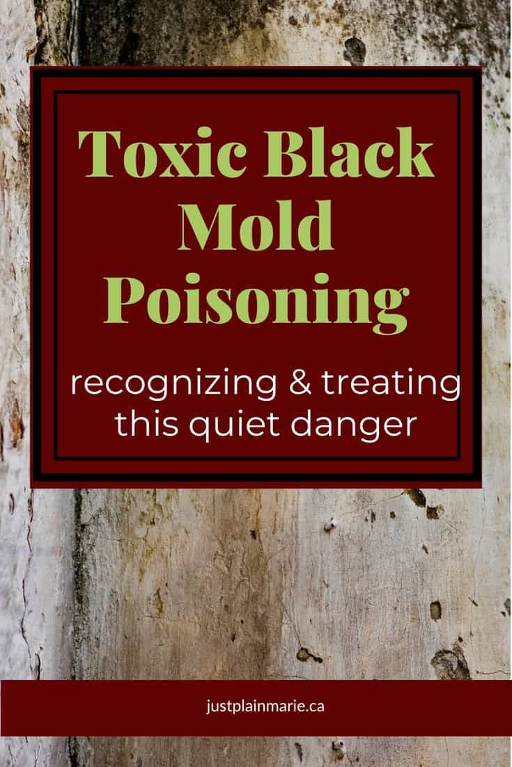 Toxic Black Mold Poisoning Is A Serious Issue Exposure To Causes Some Very Clear Symptomust Be Treated Immediately