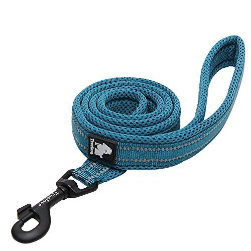 Chais Choice Best Padded 3M Reflective Outdoor Adventure Dog Leash 44 Medium Blue ** Learn more by visiting the image link.