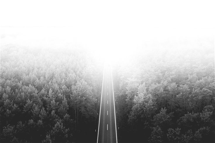 Road to the Sky ➤ DOWNLOAD by click on the picture ➤ #Road #Forest #Nature #Clouds #Fog #Minimalistic #BlackAndWhite #Shining #RoomForText #Simple  #Endless #freestockphotos #picjumbo