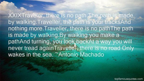traveller traveller antonio machado - Google Search