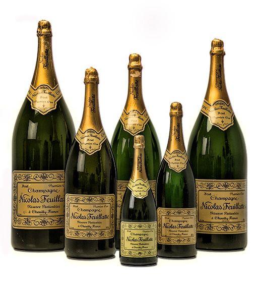 Comparison of Champagne Bottle sizes