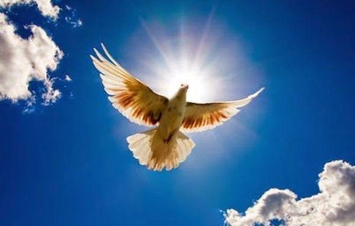 Έτσι είναι όταν το Άγιο Πνεύμα αρχίζει να σε επισκιάζει - http://www.vimaorthodoxias.gr/theologikos-logos-diafora/etsi-ine-otan-to-agio-pnevma-archizi-na-se-episkiazi/