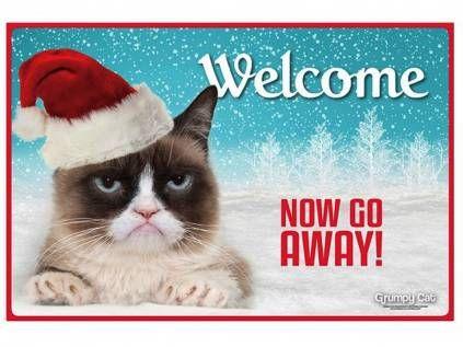 36 besten weihnachten hund und katze bilder auf pinterest. Black Bedroom Furniture Sets. Home Design Ideas