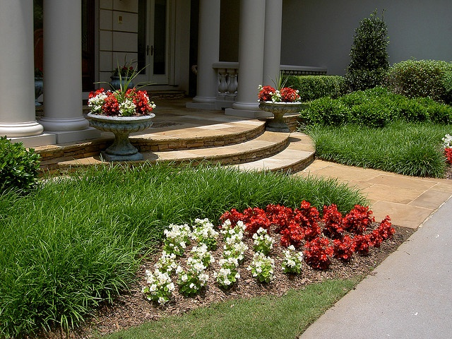 20 best images about low maintenance shade flower bed on for Low maintenance flower bed ideas