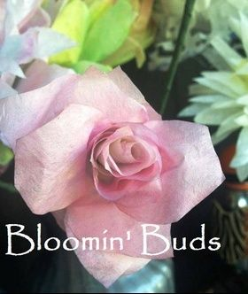 Facebook.com/bloominbuds