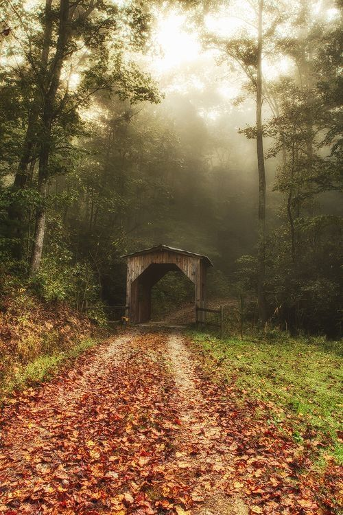 Little Covered Bridge in the morning mist of the Blue Ridge Mountains, North Carolina