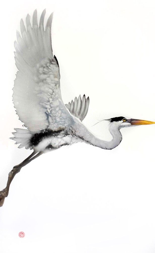 Heron - Karl paint his birds from memory, using watercolor and charcoal on hand-made paper. - I look at a bird and a specific expression or posture, which particularly expresses the personality of the bird, sticks in my mind. Then I paint...