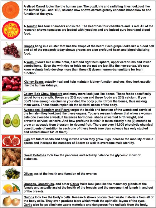 Interesting facts about the foods shown and how many of them resemble the parts of the human body they make healthier.