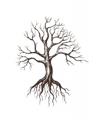 bare tree drawing with roots - Google Search
