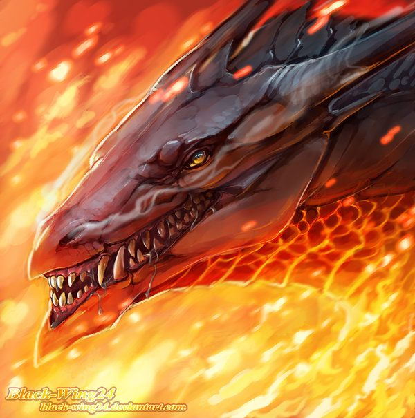 Random Dragon head by Black-Wing24.deviantart.com on @deviantART