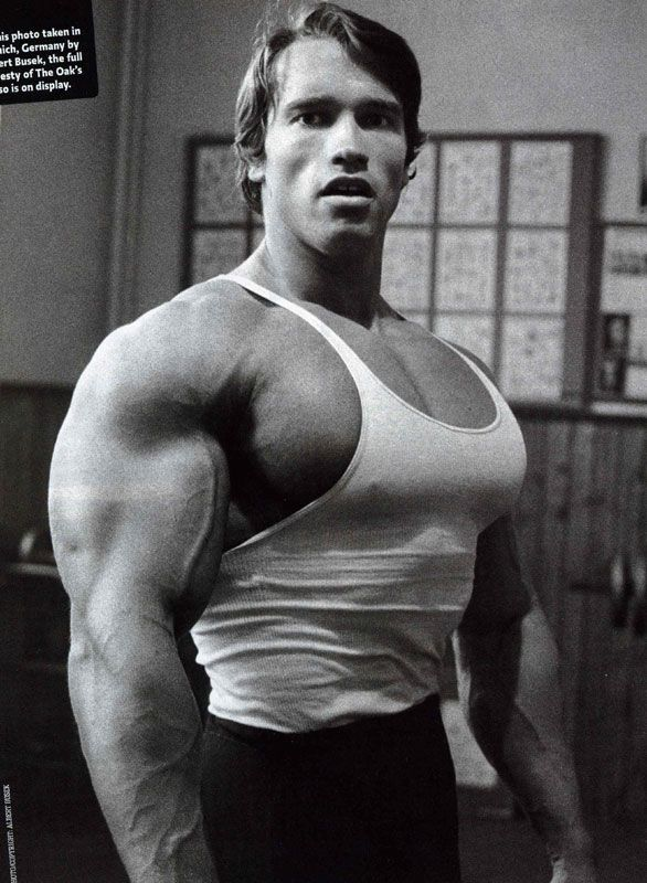 Arnold Schwarzenegger - The Best Gallery Of This