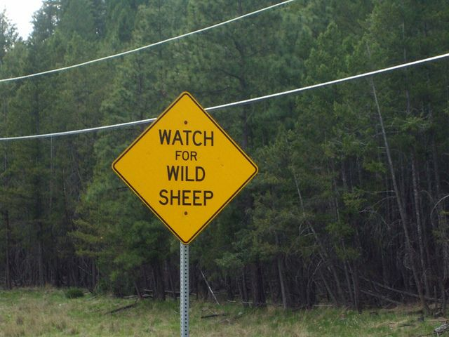 canada has the very best road signs