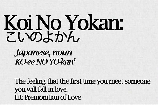 Koi No Yokan Meaning Koi no yokan (meaning) its the