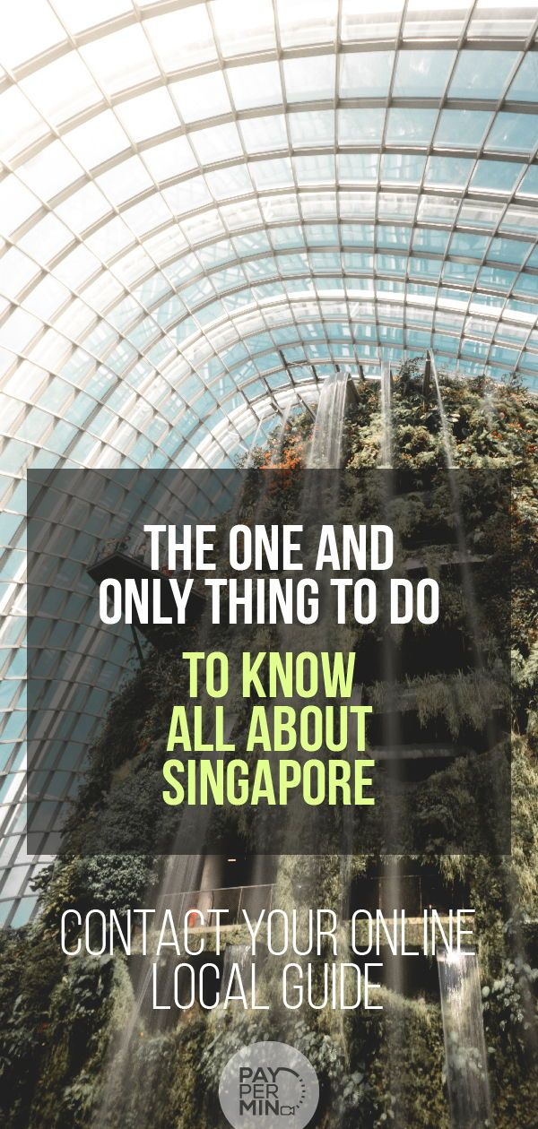 To Know All About Singapore Check Out Our Online Local Guides At Calltheone Com Who Can Give You In Singapore Travel All About Singapore Asia Travel