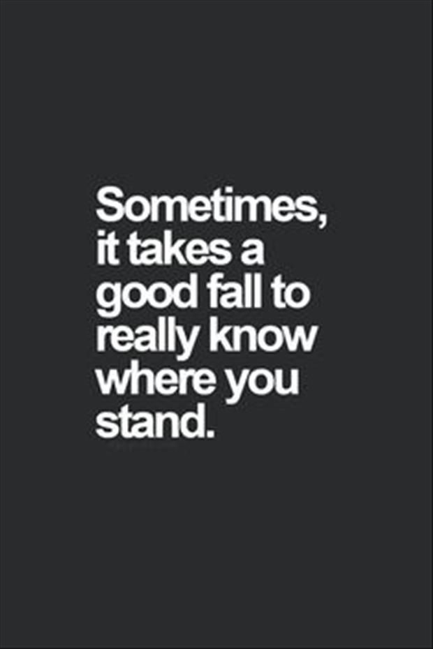 Sometimes it takes a good fall to really know where you stand ~ Top Quotes and Sayings