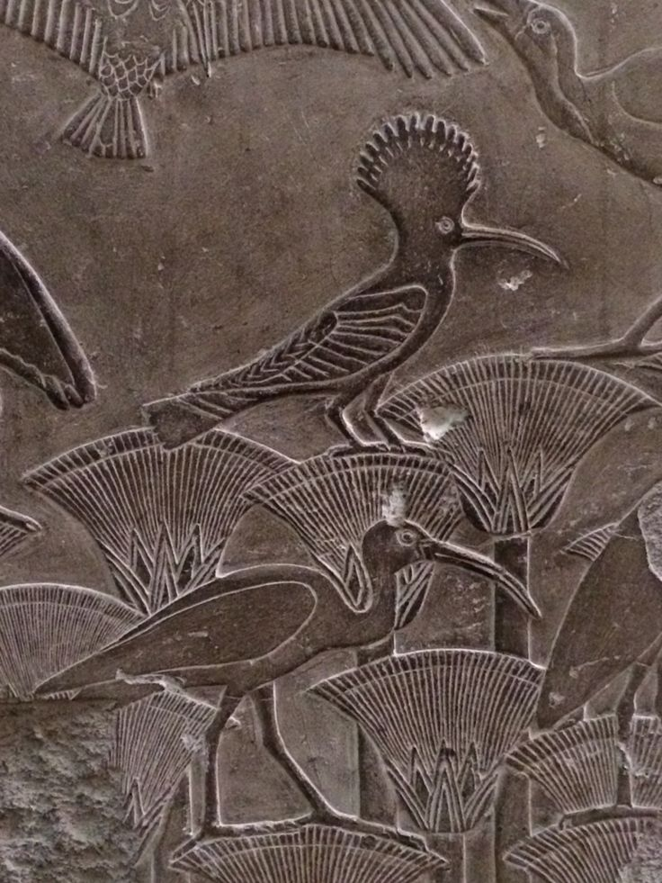 Frieze with lotus blossoms, ibis and hoopoe. Egyptian museum, Cairo