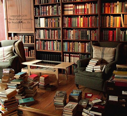 Heaven: books everywhere, nice armchairs, ambient and natural lighting, table for drinks nearby.