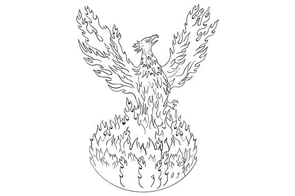 Phoenix Rising Fiery Flames  by patrimonio on @creativemarket. Drawing sketch style illustration of a phoenix rising up from fiery flames, wings raised for flight done in black and white set on isolated white background. #illustration #PhoenixRisingFieryFlames