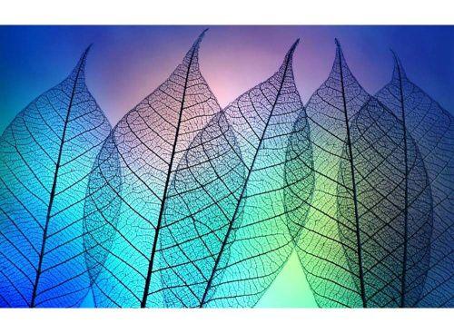 Стразы «Цветные листья» картина стразами, алмазная вышивка, алмазная мозаика, живопись стразами, дизайн, недорого, своими руками, поделки своими руками