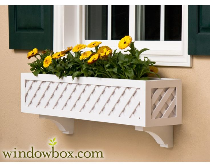 Window Box ~ Lattice. Build a flower box with a lattice design. This is a classic style that looks great with practically any home. While the normal colour is white, feel free to paint it whatever suits you and your desires!