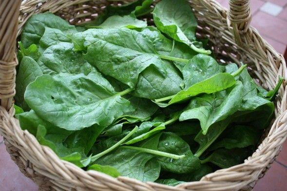 La verdura,oltre ad avere benefici,previene le malattie croniche.Quasi tutti ne mangiamo,ma non sappiamo qual'è la più nutriente con meno calorie.Classifica