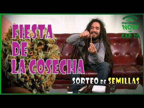 RASTA se fuma la MOTA de la Fiesta de la COSECHA y volamos a EXPO BOGOTÀ COLOMBIA. Marihuana NOW 30