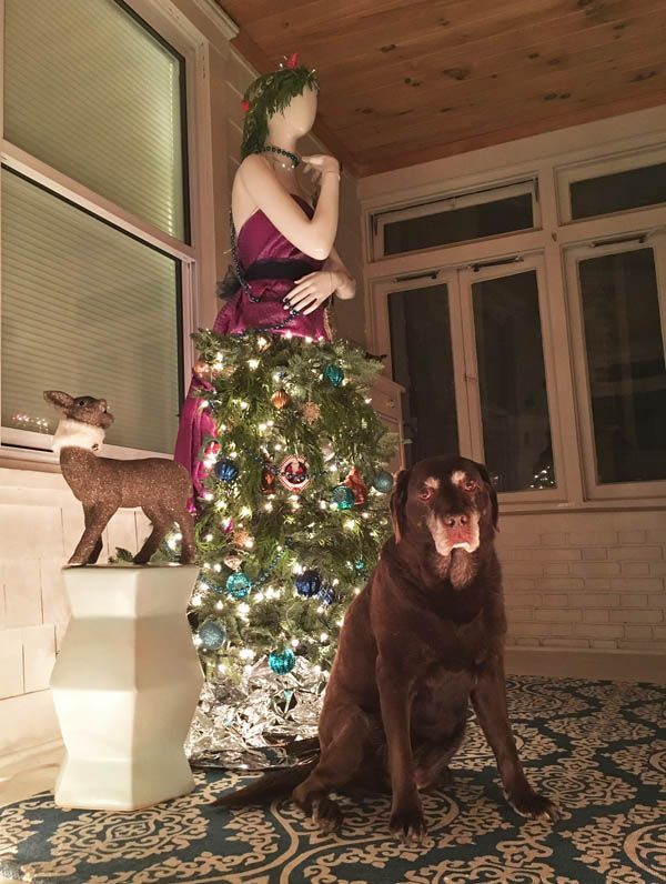 Mannequin Christmas Tree Dress | Holidays with Dogs