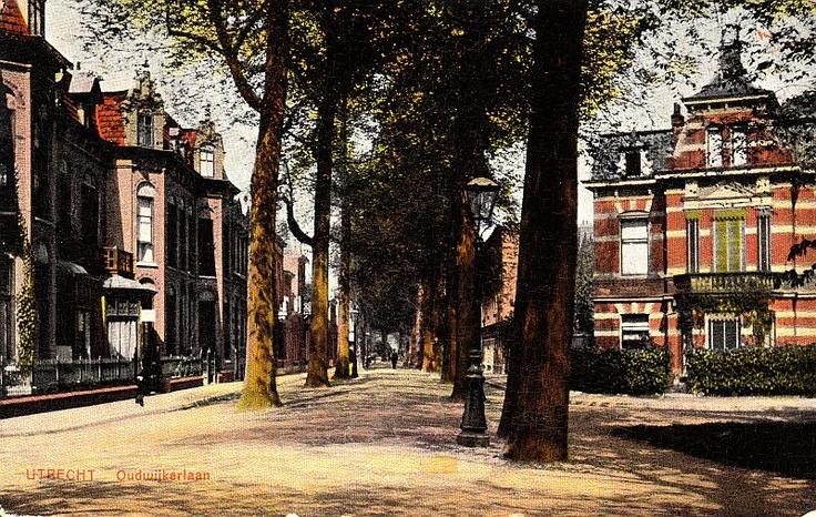Oudwijk - Wilhelminapark | Rond 1900 | De Oudwijkerlaan vanaf de hoek met de Helmstraat en Ramstraat