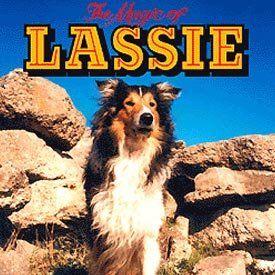Viejas series de TV: LASSIE