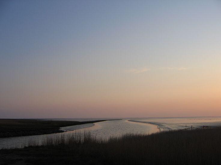Wadden Sea Britta Hellesøe
