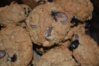 Blueberry Oatmeal Cookies by Mira