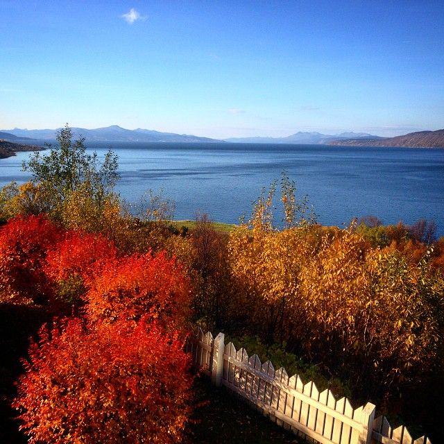 """#høst #naturephotograpy  #natur #norge❤️#passion#picoftoday #picsnorway  #Narvik #picsnorway #procaptures  #naturelovers #orange #monday #mountain…"""