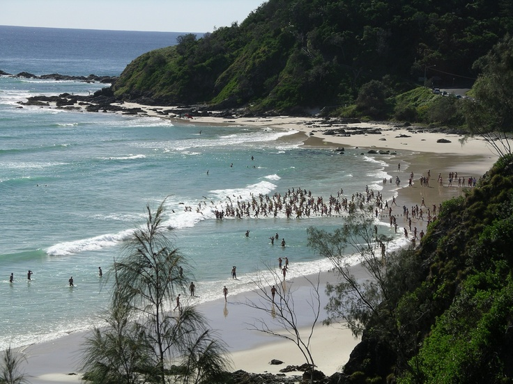 Byron Bay Big Swim...coming up this weekend!