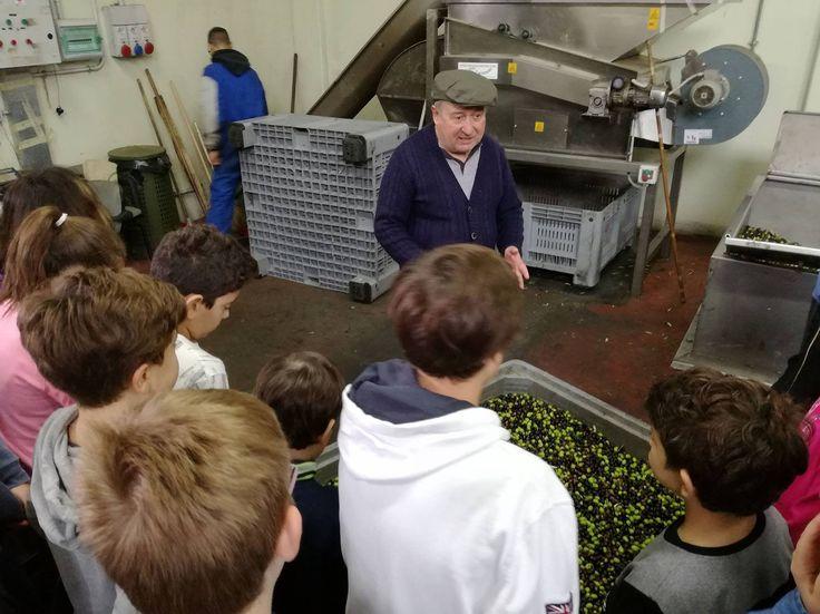 13/12/2016. Scuolartigiana. Lezione sulla produzione dell'olio extravergine di oliva con Giovan Battista Donati