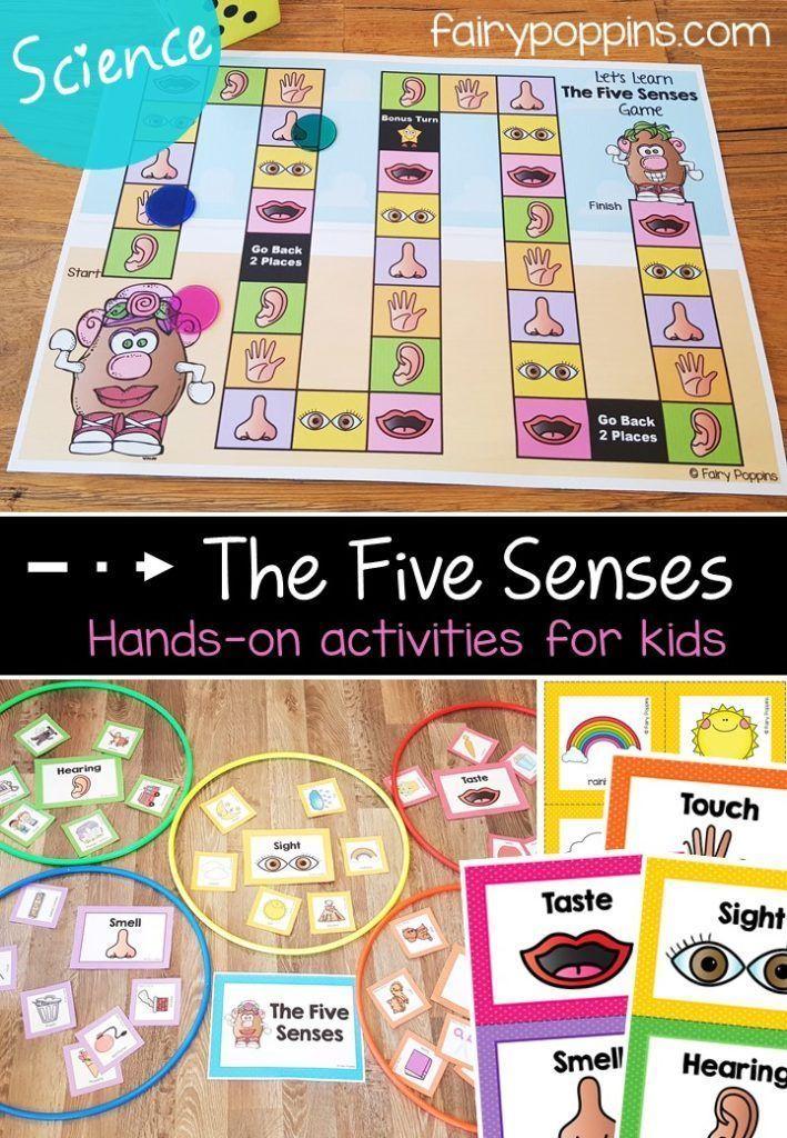 Five Senses Activities For Kids | Senses activities ...