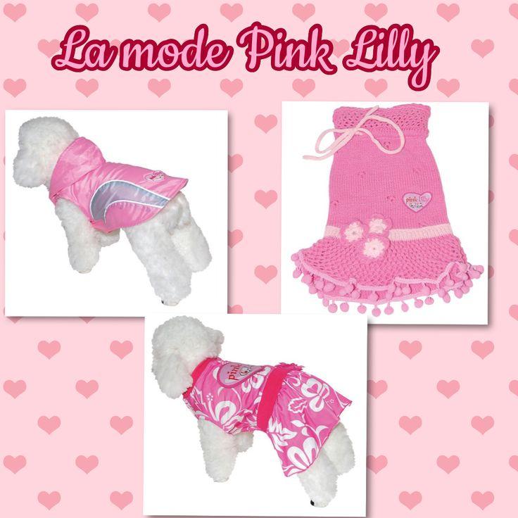 Imper et robe Pink LIlly www.universdogs.com