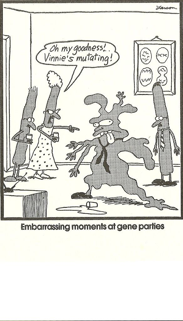 evolution cartoon far side - Google Search