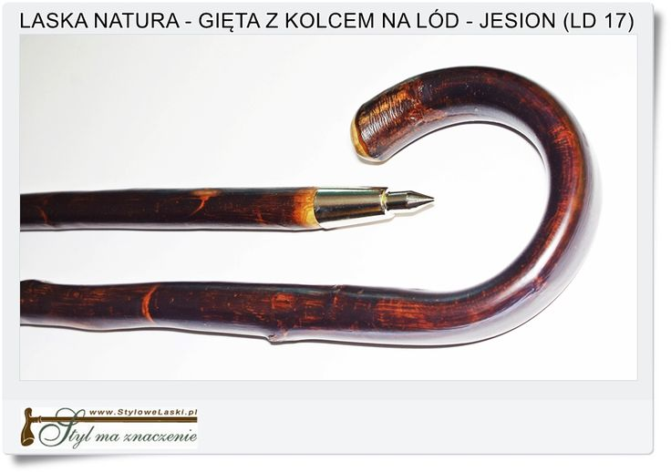 Laska naturalna gięta z metalowym kolcem na Lód Jesion