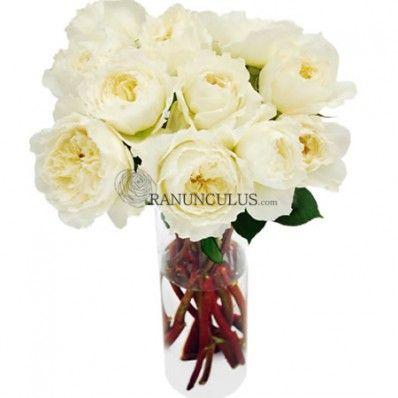 27 best rose varieties images on pinterest | rose varieties