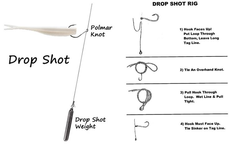 Drop shot polmar knot rig