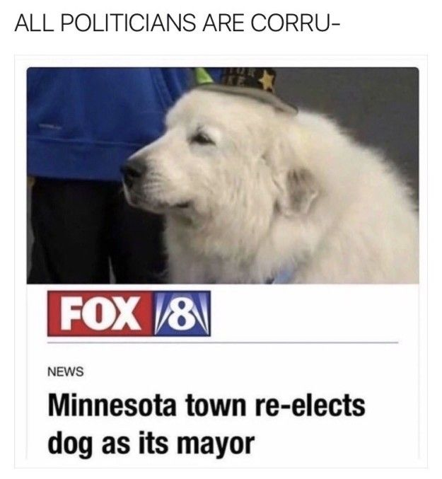 YEY, all politicians are corrupt, except that one, that one's a good boy!