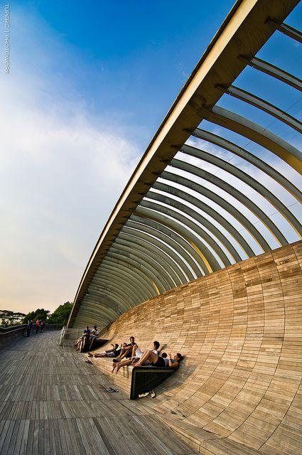 Henderson Wave Bridge, pedestrian bridge in Singapore