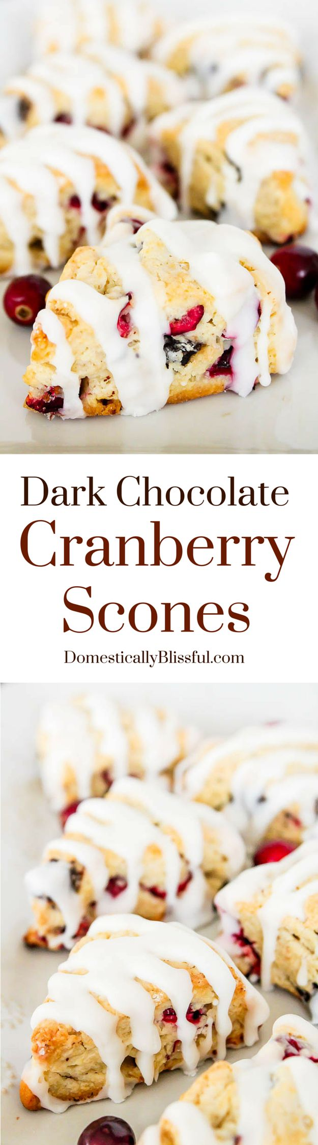 Dark Chocolate Cranberry Scones are filled with dark chocolate chunks, fresh cranberries, & drizzled with french vanilla icing!