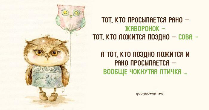 Хорошее настроение с утра — это залог хорошего дня! Если мы умеем с позитивом смотреть на все ситуации, значит мы научились жить. Быть философом — это умение смотреть на все ситуации с точки зрения по…