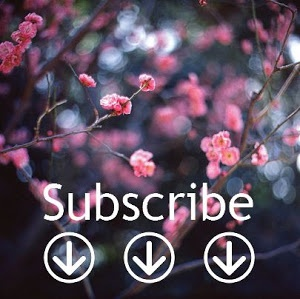 http://dana-gardendesign.blogspot.it/