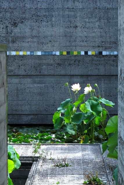 Garden designed by Carlo Scarpa for the Brion-Vega Cemetery, near Treviso Italy. 1970-2