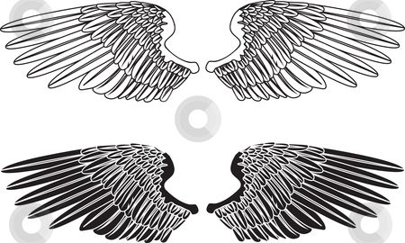 Black and White Wings stock vector